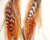 Soaring Spirit Feather Earrings