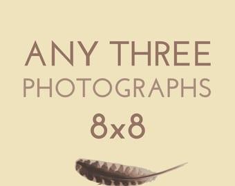 Set of any THREE 8x8 photographs by Kanelstrand