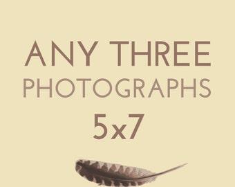 Set of any THREE 5x7 photographs by Kanelstrand