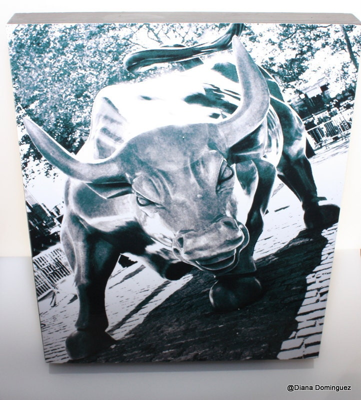 Photography Charging Bull Wall Street New York City 8x10x1