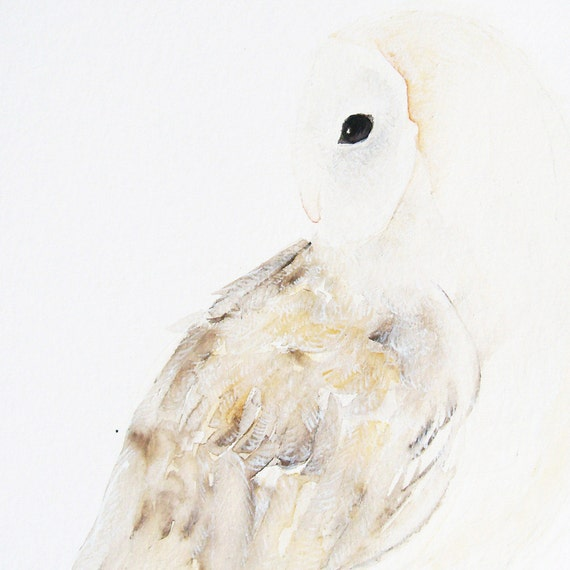Barn Owl - Original Woodland Creature Watercolor Painting