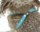 XS Turquoise Easy Step-in Harness