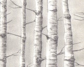birch tree set of 3