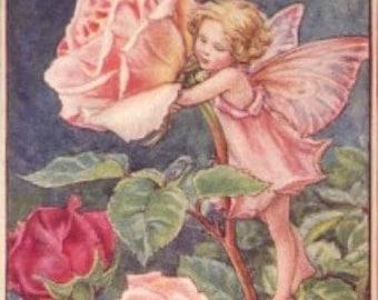 The Rose Fairy - Cross stitch pattern pdf format