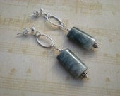 Eagle eye jasper stone earrings, sterling silver post - greygirldesigns