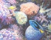 "ORIGINAL Sea life OceanTropical Fish Soft PASTEL Painting  12""x16"" SALE"