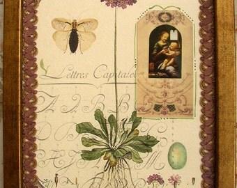 Original Botanical Collage