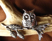 Little Owl on Branch Brooch or Pin in Sterling Silver, Harry Potter Nature Inspired Eco Friendly with coupon