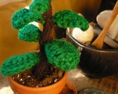 No Kill Jade Plant --- MADE TO ORDER