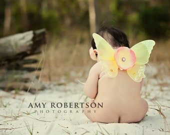 SPRING LOVE - Pink and Yellow Wing Set - Newborn and Up