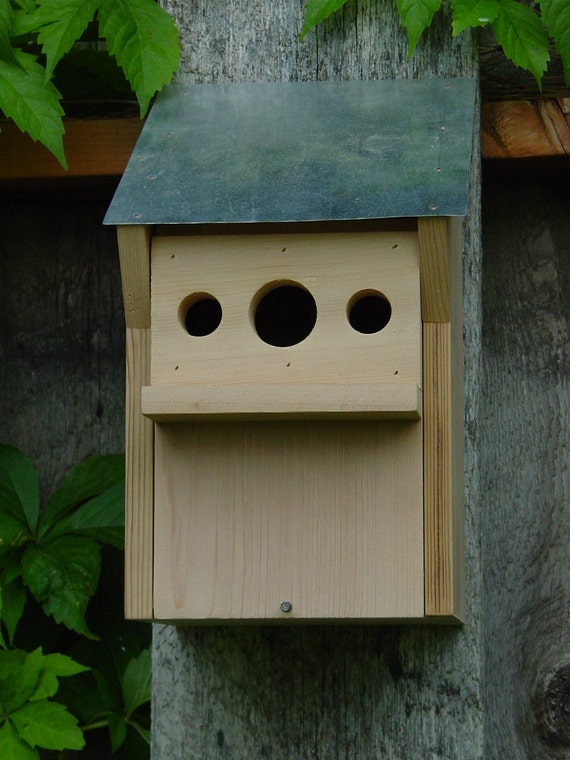 Tree Swallow Nesting House