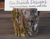 Rustic Placecard Holders Set of 8 Natural Branch Bark Woodland Texture  Green Fun fairy dwellings