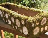 Rustic Woodland Planter Box Moss Branch Centerpiece Garden Party Decor Weddings