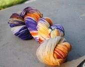 75/25 Superwash Merino/Nylon Fingering Weight Yarn - Bird of Paradise
