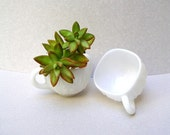 Milk Glass PUNCH CUPS.  Vintage Milk Glass, Home Decor.  Midcentury Style, Pure White Cut Glass.  Use As Planters, Give As Gifts.