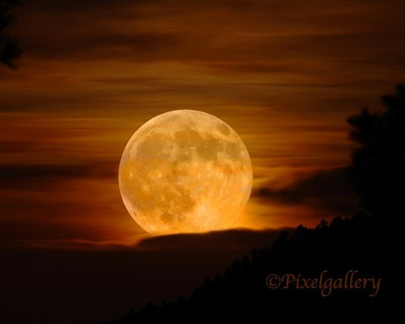 MOON - Not Seen This Large Again  for 18 Years - Super Moon - 8x10 Metallic Print
