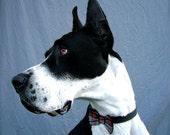 Dapper Dog Bow Tie in Eco Felt and Plaid Collar Accessory
