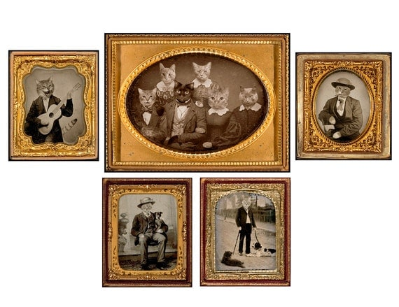 photo collage, mixed media, Altered Images, cat, Daguerreotype, Funny, Fun, Silly, Sepia, Brown, Gold, Note Cards, Blank Inside, SET OF 10