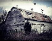 FAMILY FARM, a nostalgic barn with a few secrets - 6x9 photograph