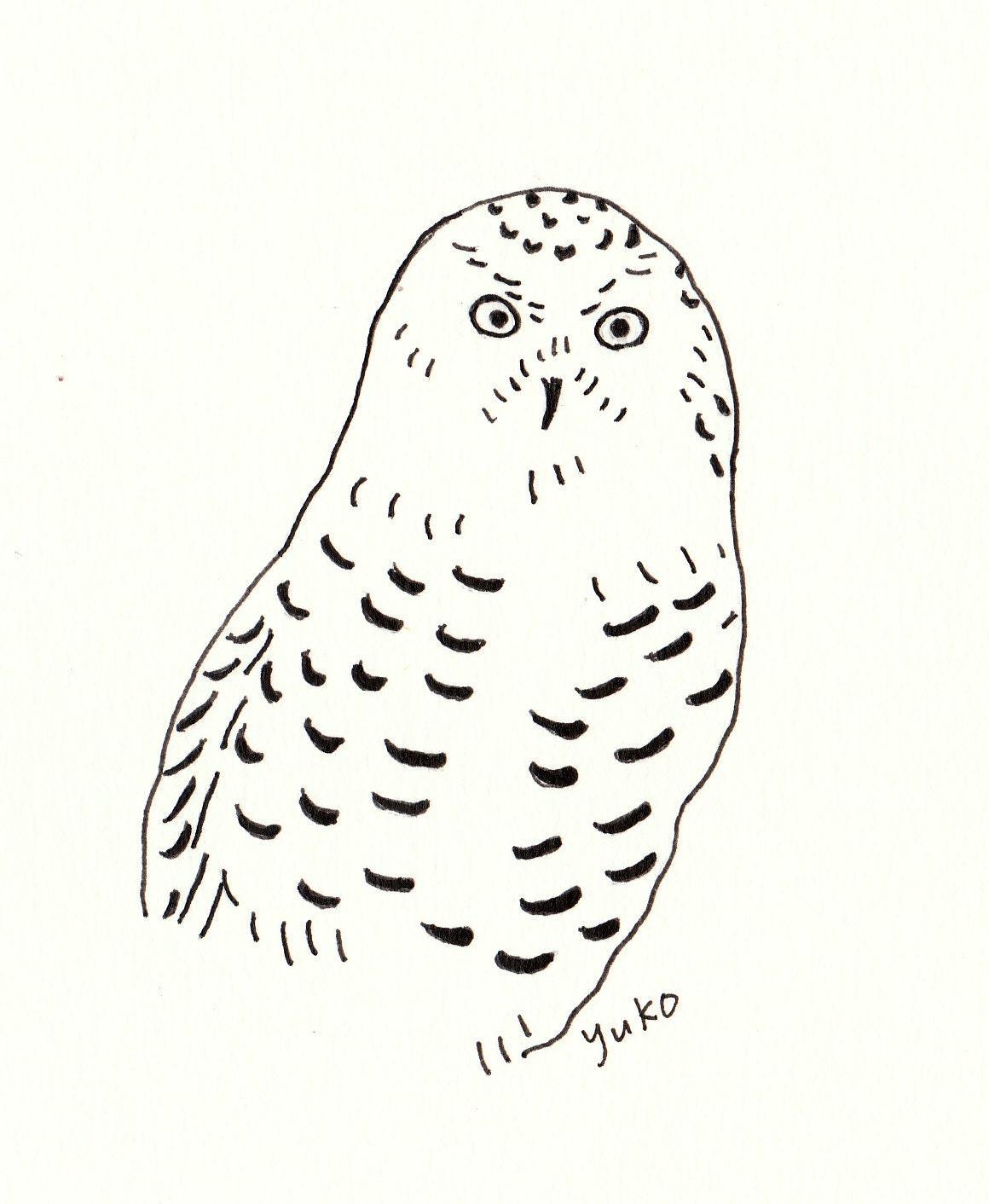 Line Drawing Prints : Snowy owl line art print by honeyberrystudios on etsy