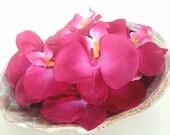 Wedding Orchid Hair Clips, Hawaiian Wedding, Hula Hair Clips, Pink Orchid Hair Clips, Custom Order For Weddings