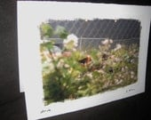 """SALE: """"Drive"""" - Blank Greeting Cards"""