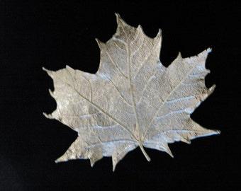 Real Maple Leaf Silver brooch