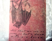 Poe's Bats and Dreams Journal
