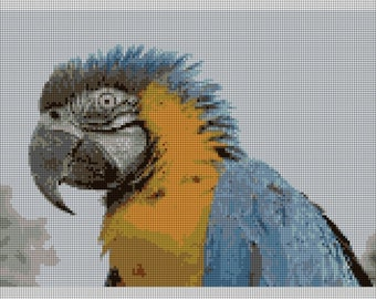 Macaw Parrot Needlepoint Kit