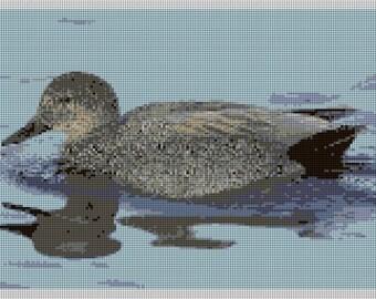 Gadwall Duck Needlepoint Kit
