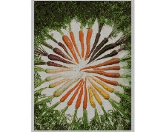 Carrots of Many Colors Needlepoint Canvas
