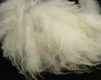 Spinning fiber, fleece white East Frisean milk sheeps, 7 oz