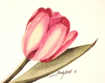 Pink Tulip Print Watercolor Art