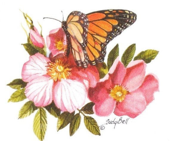 Pink Wild Rose, Butterfly, Wildflower Print, Watercolor Painting