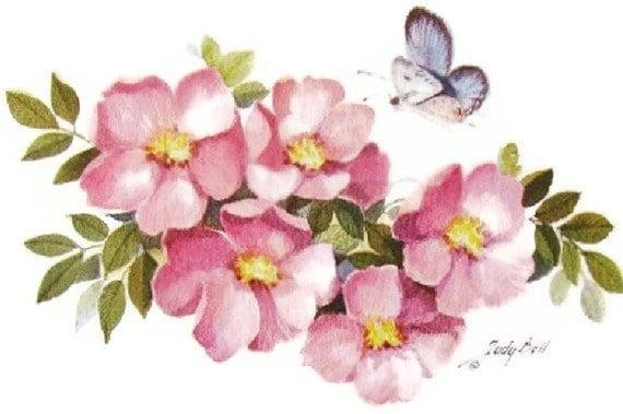 Prairie Rose Wildflower -  Butterfly - Watercolor art Print