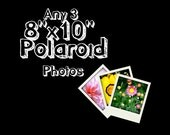 Any 3 Fine Art Photographs Printed as 8x10 Polaroids