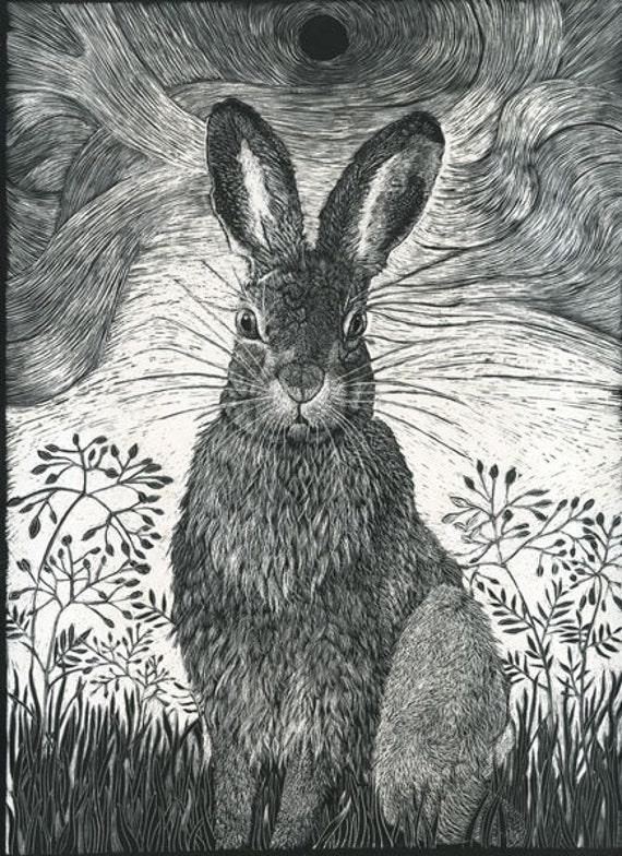 Hare in the grass Fine Art Print from Scraperboard Original