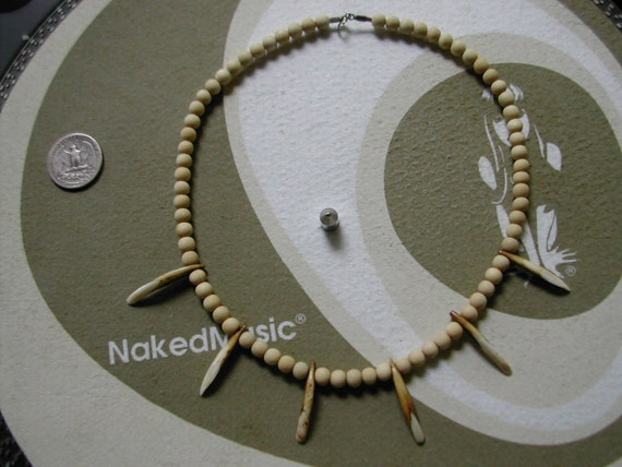 Necklace with six Animal incisors drilled by Native Americans over 400 years ago