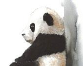 Panda Cup - Original Painting 8x11