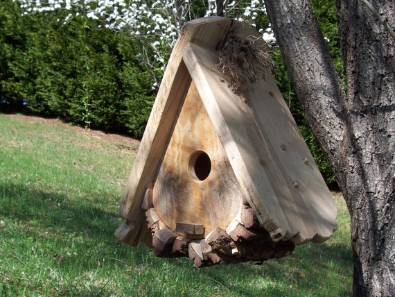 Signature Bird House for our Feathered Friends