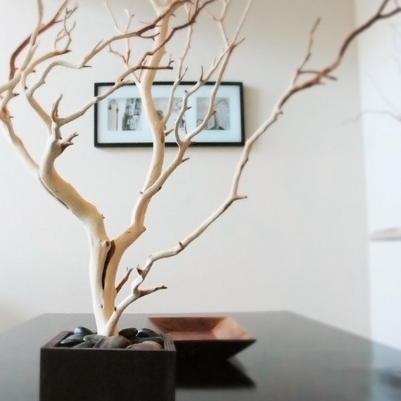 30 natural tree jewelry holder jewelry organizer west for Tree branch jewelry holder