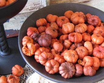 Mini Pumpkins for Halloween, Thanksgiving or Wedding Decorations, Orange Puka Pods, Fairy Garden Pumpkins