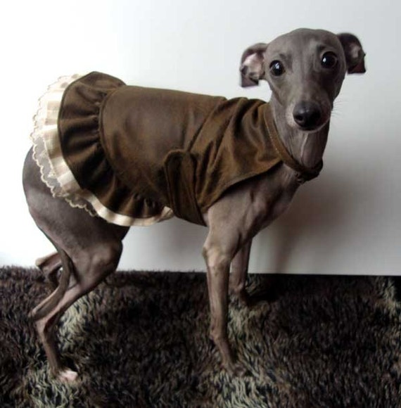 Steampunk Brown Distressed Faux Leather Dress with Triple Frill Trim for small dogs