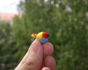 Super tiny colourful tropical bird - ideal for doll houses