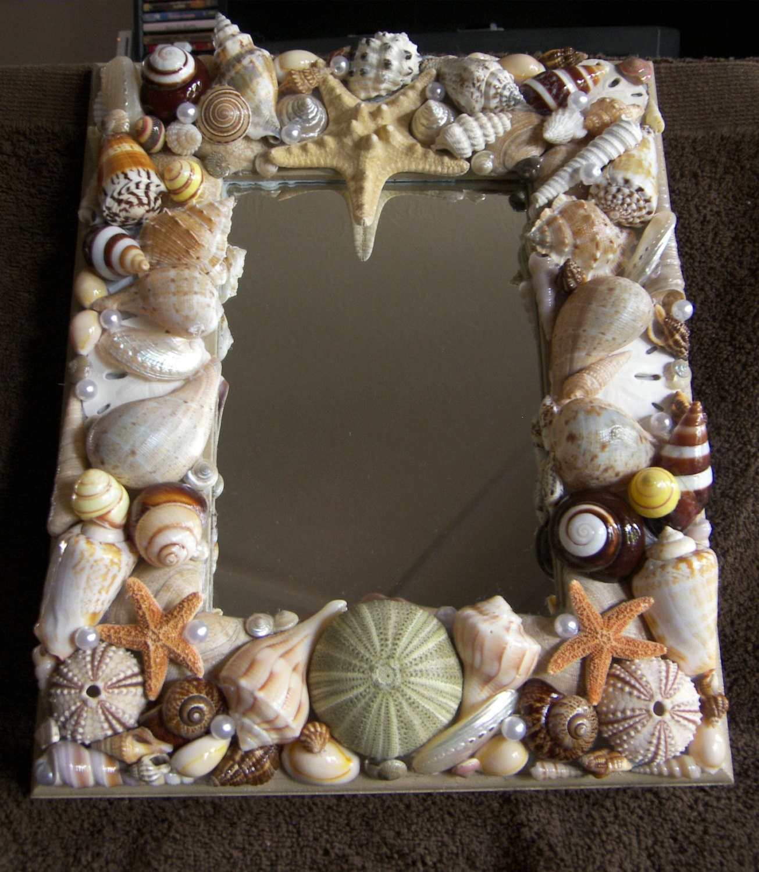 Seashell Mirror Starfish Urchins Amp Sand Dollars