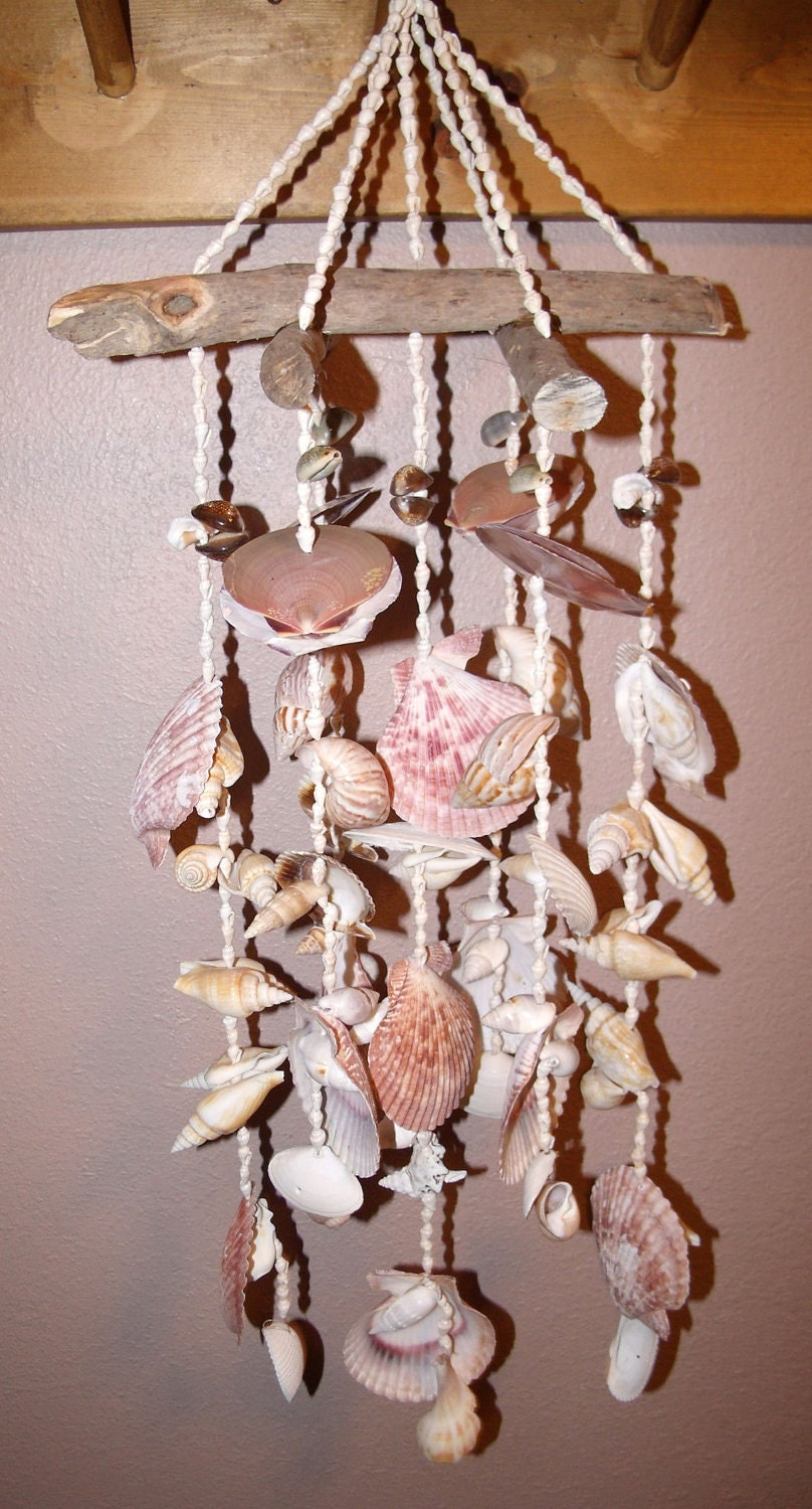 Sea Shell Wind Chime 14 The Big One