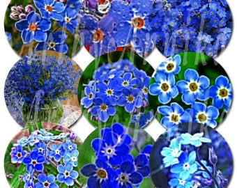 Digital Collage of Forget-Me-Not - 48 1x1 Inch Circle JPG images - Digital Collage Sheet