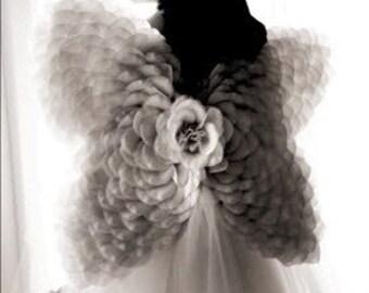 Delicate Silk Petal Butterfly Wings