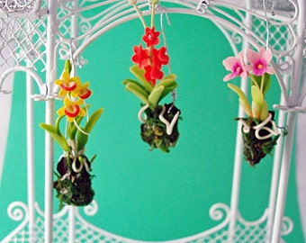 3 Dollhouse Hanging Orchids