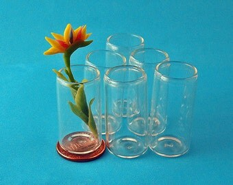 6  Miniature Cylinder Glass Containers /Vases for DIY